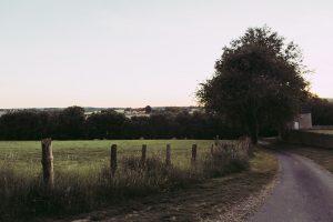 Chemin d'accès au manoir de Bellegarde